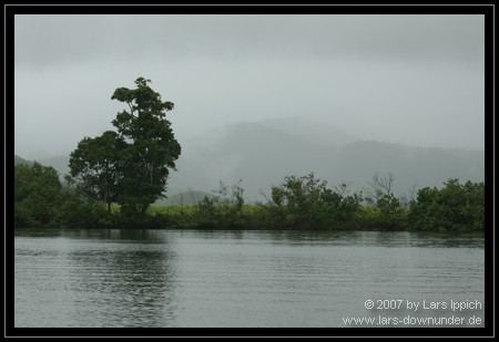 Aussicht am Daintree River