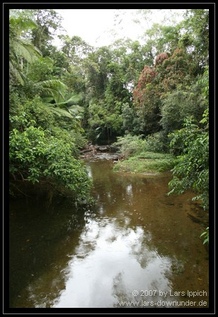 Hutchinsons Creek
